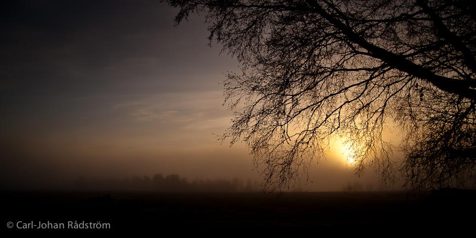 Beautiful sunset on November 9