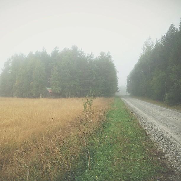 Misty morning. #vscocam #mist