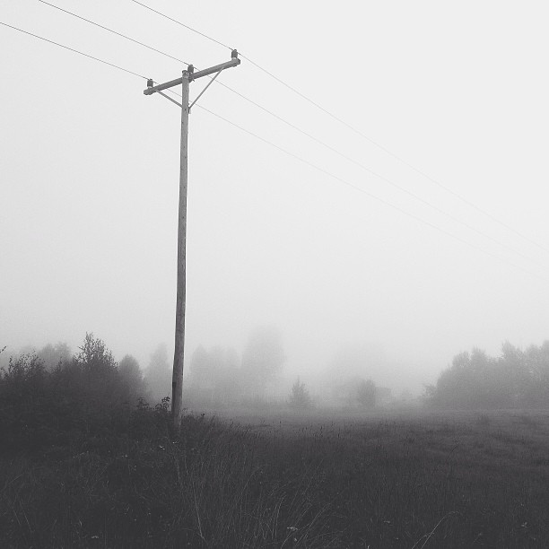 Misty morning #2 #vscocam #mist #monochrome